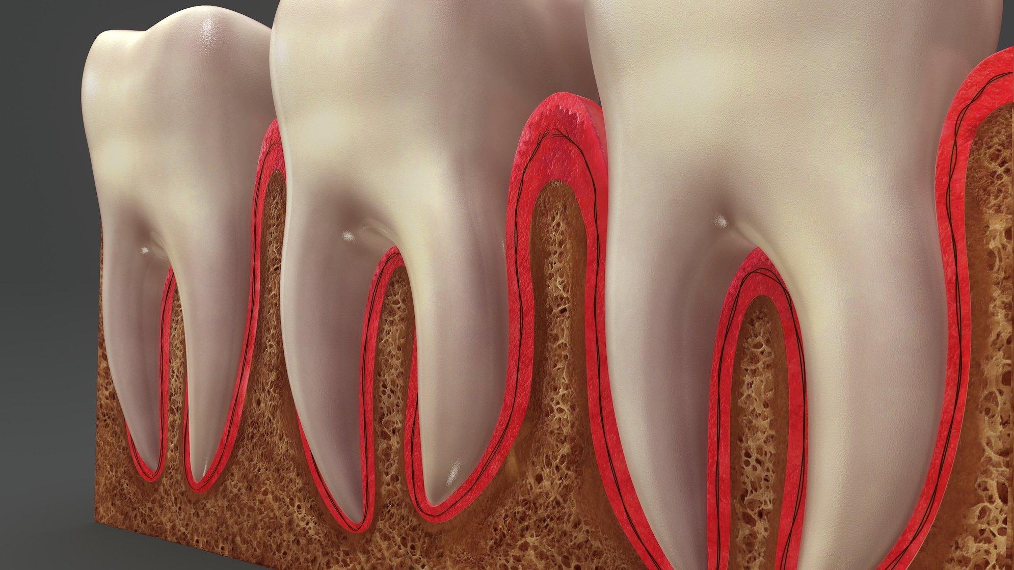 Dentist Kelowna Dr. Sandy Crocker Teeth Root Canal Dental Office